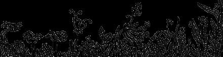 WL website getekend gras